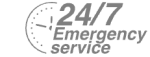 24/7 Emergency Service Pest Control in Bromley, Bickley, Downham, BR1. Call Now! 020 8166 9746