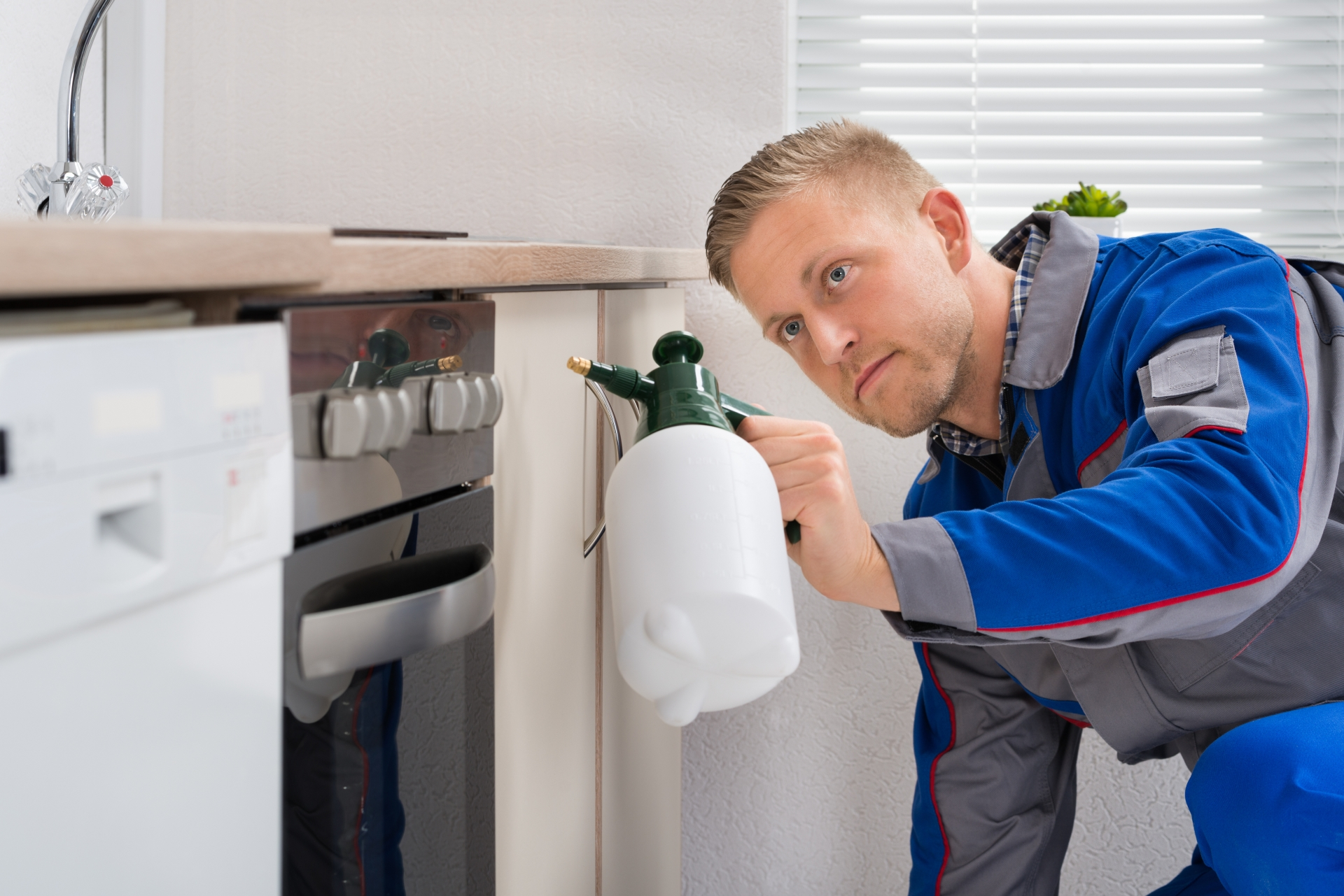 Pest Inspection, Pest Control in Bromley, Bickley, Downham, BR1. Call Now 020 8166 9746
