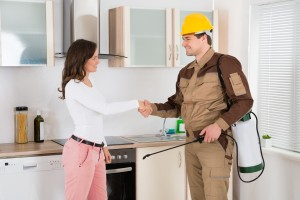Bed Bug Exterminator, Pest Control in Bromley, Bickley, Downham, BR1. Call Now 020 8166 9746